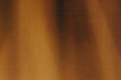 mittnacht Brandschutzfenster aus Holz